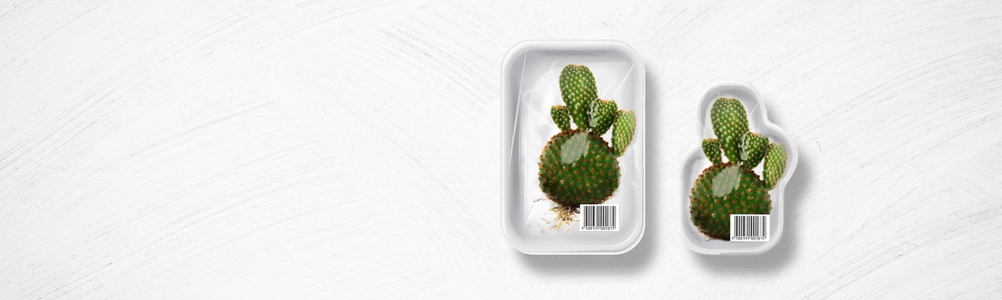 Plastic verpakkingen neopack for Plastic verpakkingen